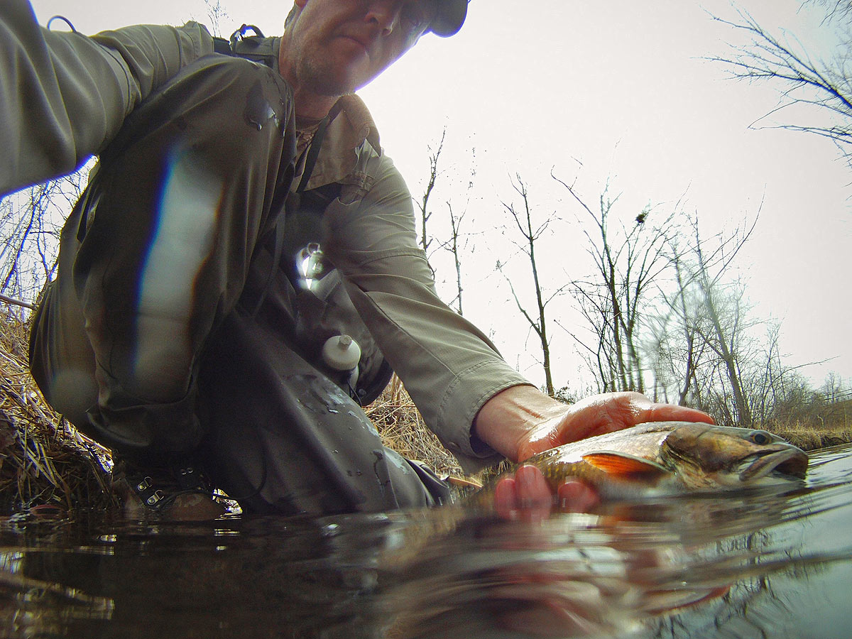 adrift_fly_fishing_labor_graphic_design_minneapolis_andy_weaverling_brook_trout_27