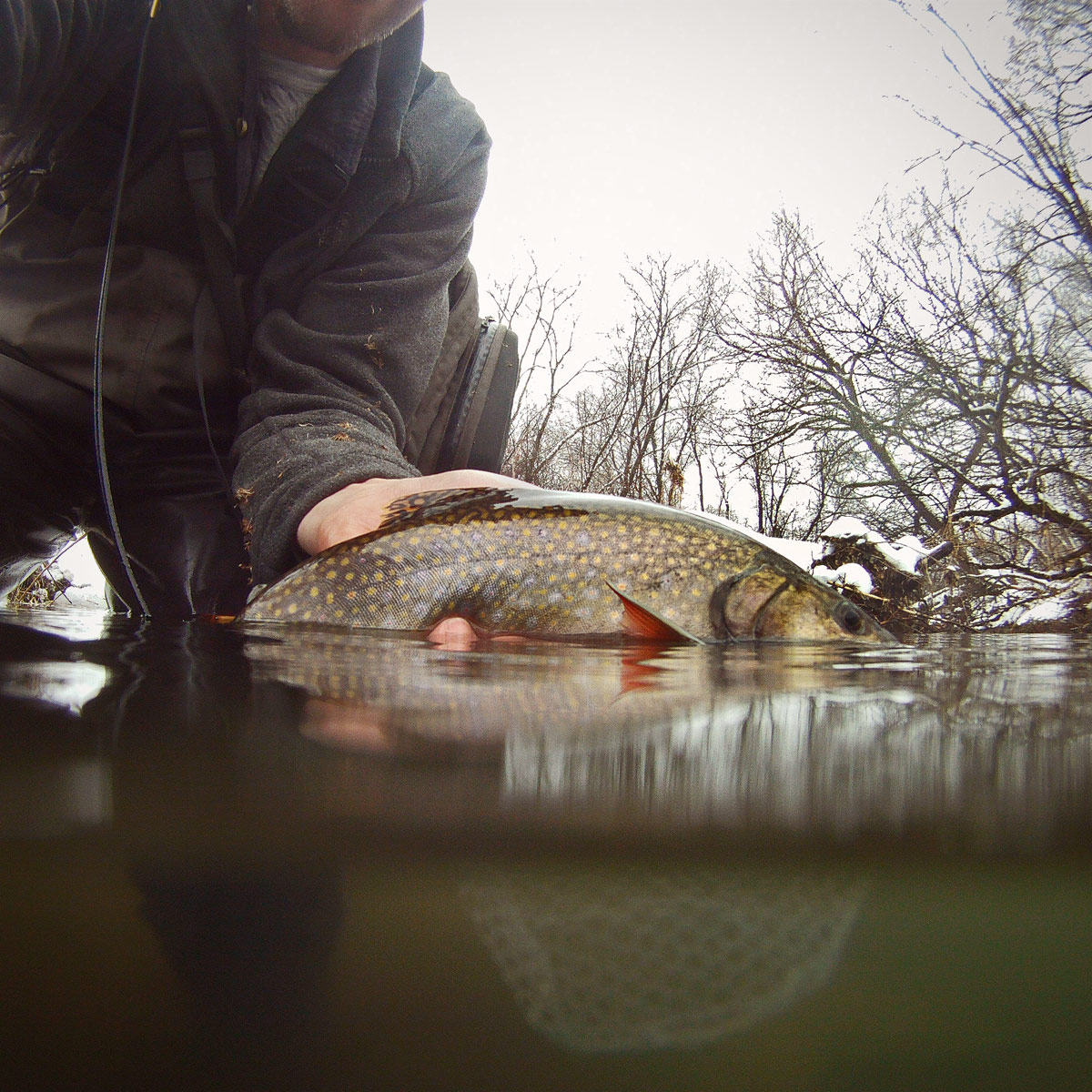 adrift_fly_fishing_labor_graphic_design_minneapolis_andy_weaverling_driftless_trout_winter_05