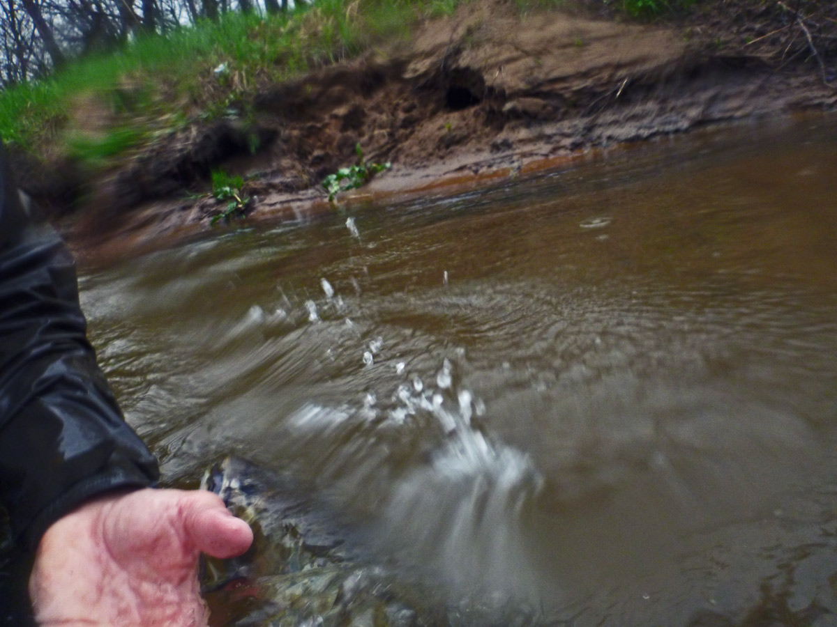 adrift_fly_fishing_labor_graphic_design_minneapolis_andy_weaverling_driftless_big_brook_trout_17